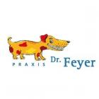Logo Zahnarzt, Kieferorthopäde, Zahnarzt für Kieferorthopädie : Dr. Thomas Feyer, , Fachpraxis für Kieferorthopädie, Bremen